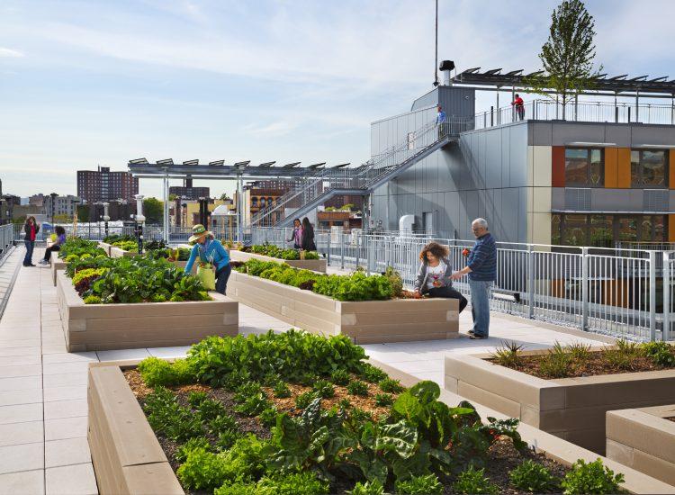 Via Verde rooftop