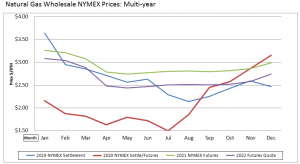 Natural Gas Wholesale Multi year pricing